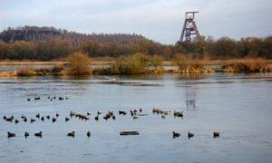 l'étang de Chabaud Latour