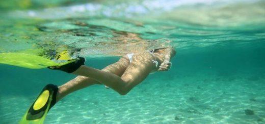 calories nage avec palmes