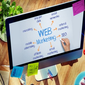 Guide du webmarketing