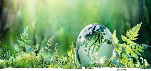 urgence écologique