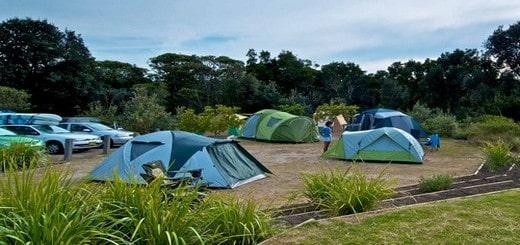 terrain de camping original