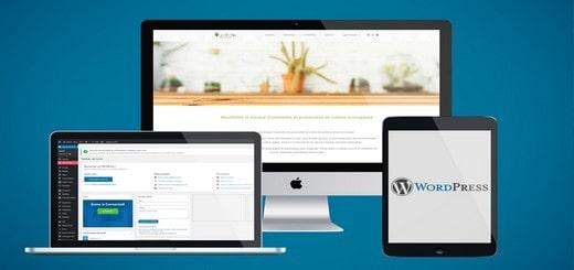 site gratuit avec wordpress