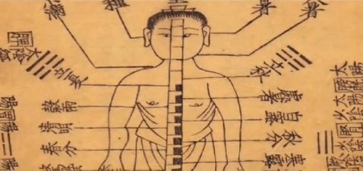 principes médecine chinoise