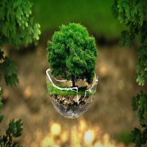 Importance de l'écologie