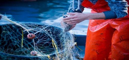 Mauritanie, la pêche écoresponsable