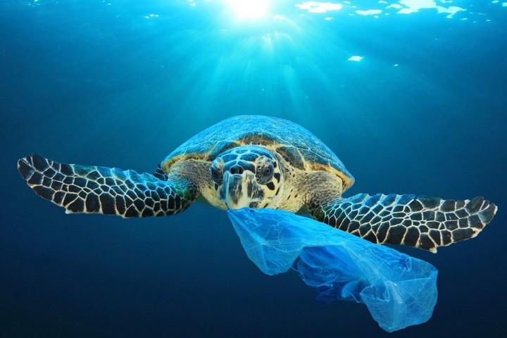 réduire les déchets plastiques